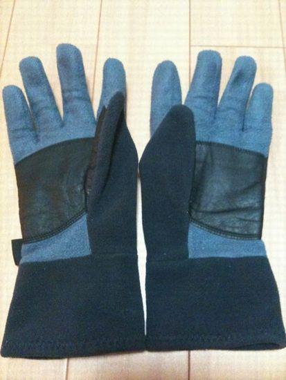 wind zone glove b2.jpg